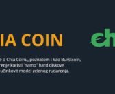 Chia Coin Project Review