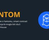 Fantom Project Review